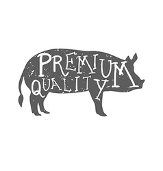 Hand Drawn Farm Animal Pig Premium quality vector image vector image