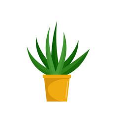 aloe indoor plant icon flat style vector image