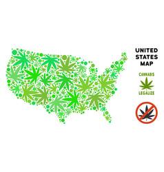Royalty free marijuana leaves composition usa map vector