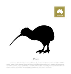 black silhouette of kiwi bird animals of australia vector image vector image
