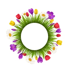 Circle frame with green grass and flowers isolated vector image