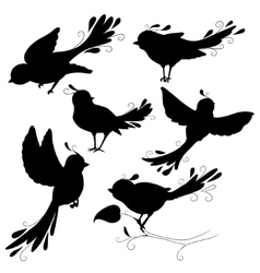 Isolated fantasy black silhouettes birds on white vector image vector image