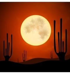 Sand cacti night vector image