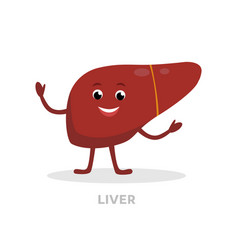 strong healthy liver cartoon character isolated on vector image vector image