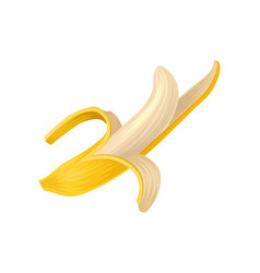 cartoon of ripe half peeled banana vector image