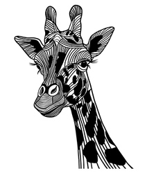 Giraffe head vector image vector image