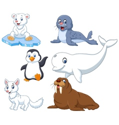 Arctics animals collection set vector