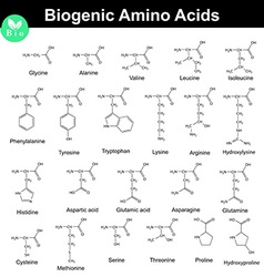 Biogenic amino acids vector