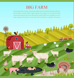 goats pigs and chicken animals at the farm vector image