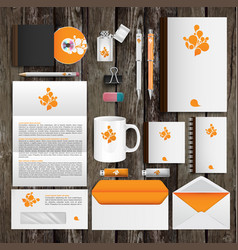 office tools and identity design vector image