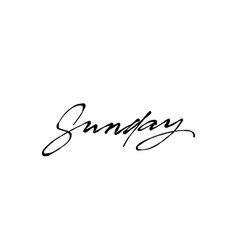 sunday handwriting ink vector image