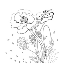 romantic monochrome background vector image vector image