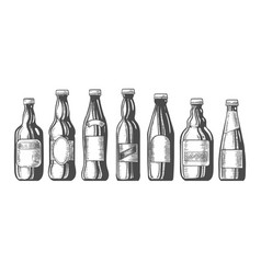 beer bottles sketch icons set vector image