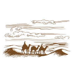 camels are on the desert vector image