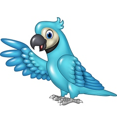Cartoon funny blue macaw presenting isolated vector image
