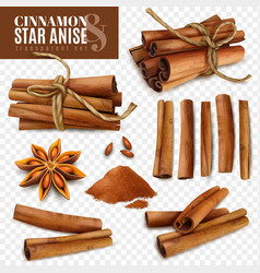 Cinnamon star anise transparent set vector