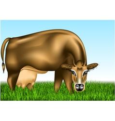 Cow dairy vector