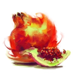 drawing pomegranate with a slice vector image