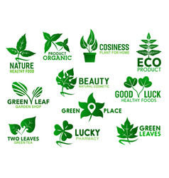 Green leaves eco plants ecology products vector