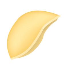 shells pasta mockup realistic style vector image