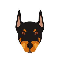 doberman dog head portrait of dog vector image vector image