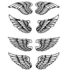 set of bird wings isolated on white background vector image vector image
