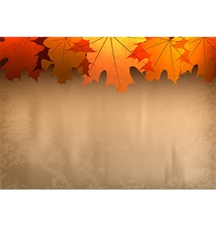 background autumn big top leavesred vector image