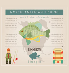 bluegill vector image