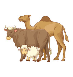 Camel cow and goat animals cartoons vector