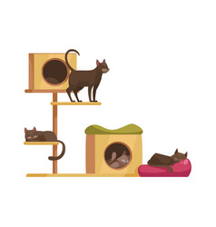 cat tree icon vector image