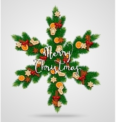 Evergreen Christmas Wreath in Form of Snowflake vector
