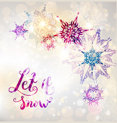fairy winter snowflakes vector image
