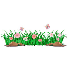 flower and grass for decor vector image