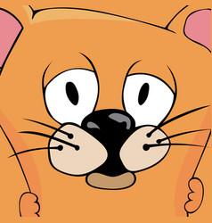 Fluffy cat vector
