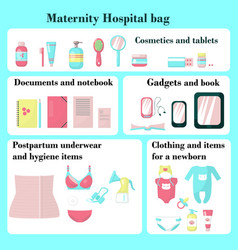 Maternity hospital bag flat isolated vector