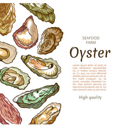 oyster shell banner seafood farm banner template vector image