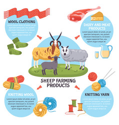 Sheep breeding infographics vector