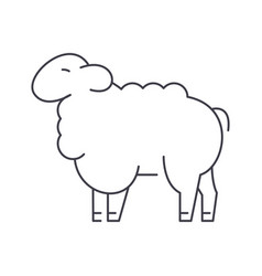 sheep line icon sign on vector image