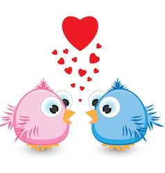 sparrows in love vector image