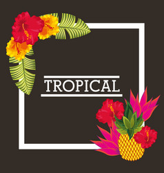 tropical flower pineapple leaves card vector image