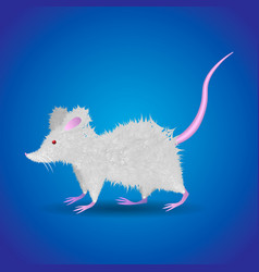 cute funny cartoon fluffy white rat vector image