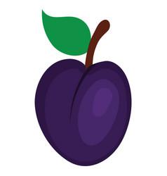 Flat design icon of plum in ui colors vector