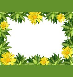 Yellow daisy flower border vector