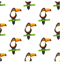 pattern with tucan vector image