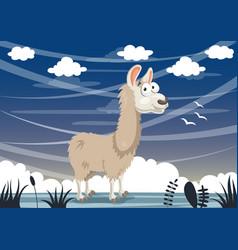 cartoon llama vector image vector image