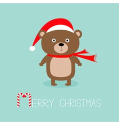 Brown bear in santa claus hat and scarf Big eyes vector image