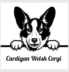 cardigan welsh corgi - peeking dogs - - breed face vector image