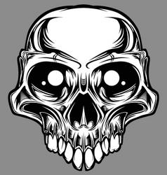 custom skull vector image