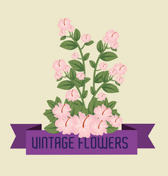 cute flowers plants with leaves and ribbon design vector image