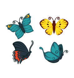 different beautiful butterflies set vector image